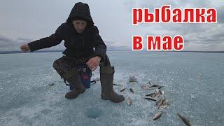 рыбалка 2021 в мае со льда