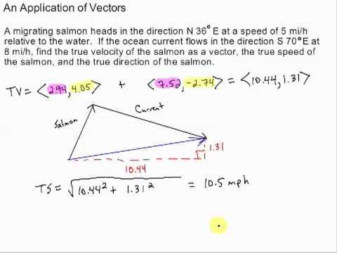 Vector Application True Velocity Youtube