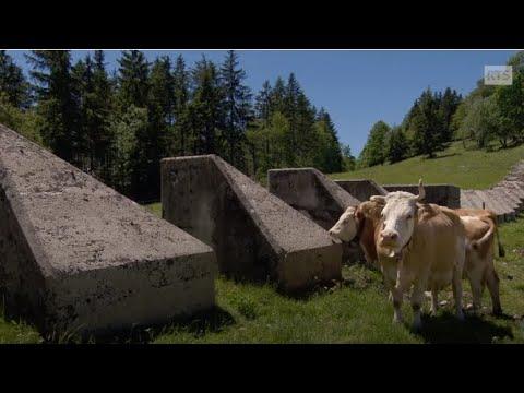«Au fil des Toblerones» ou les vestiges de constructions militaires.
