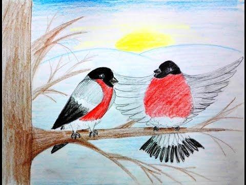 Как нарисовать снегирей - уроки рисования для малышей от Варвары Зуевой