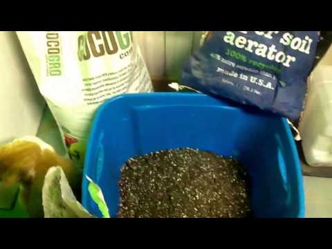 TLO Basic Mix For Super Soil