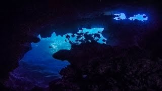 Mahi Shipwreck and Makaha Caverns Scuba Dive / Waianae, Oahu