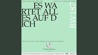 BWV 187 Es Wartet Alles Auf Dich 7 Choral Gott Hat Die Erde Zugericht