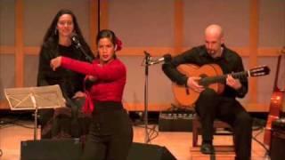 Jorge Miguel Flamenco Guitar - Farruca