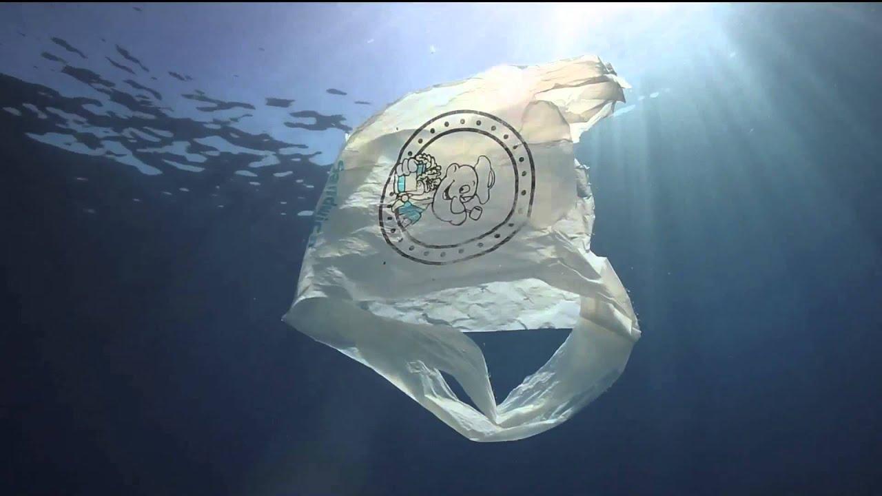 Ocean Plastic - YouTube Pacific Ocean Underwater Animals