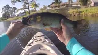 BASS FISHIN MUCKY WATER Port St  Lucie Florida
