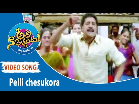 Pelli Chesukora  Song  Aha Na Pellanta Movie Songs  Allari Naresh, Ritu Barmecha