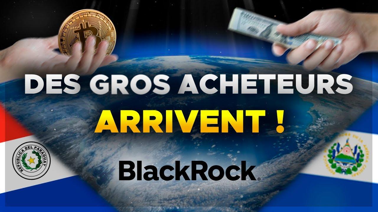 BITCOIN : DES GROS ACHETEURS ARRIVENT DANS LE GAME ! 🤑