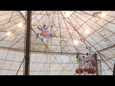 Apollo Circus Naraingarh