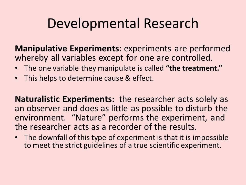 developmental research example thesis