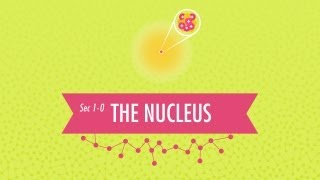 The Nucleus: Crash Course Chemistry #1(Hank does his best to convince us that chemistry is not torture, but is instead the amazing and beautiful science of stuff. Chemistry can tell us how three tiny ..., 2013-02-12T01:16:16.000Z)