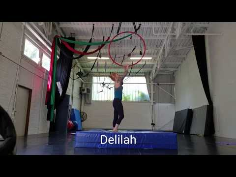 Delilah - Your First Move on Aerial Hoop