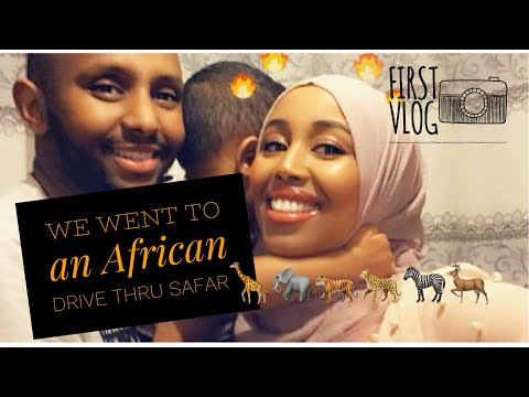 Our First Vlog | Come with us to the African Safari drive th