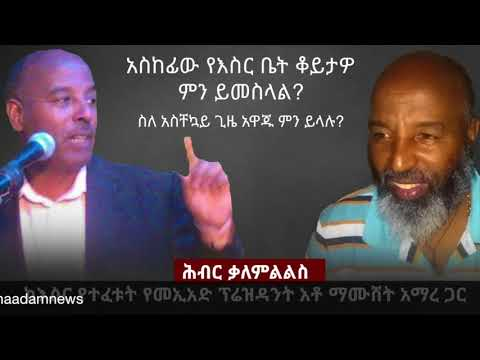 Ethiopia - Hiber Interview with AEUP Leader Mr. Mamushet Amare