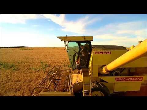 New Holland 8050 at Barley, Cork, Ireland