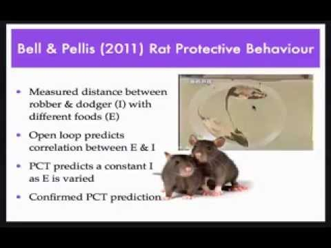 Lecture on the Closed Loop in Perceptual Control Theory - W. Mansell, University of Manchester