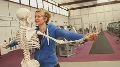 Skelett - Haltung und Bewegung | alpha Lernen erklärt Biologie