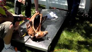 How to cook a whole lamb on the grill. St. George's Day