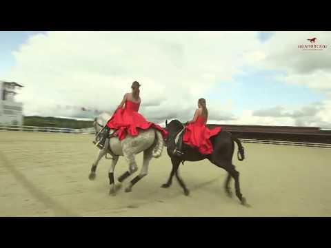 Международный конный фестиваль Иваново поле ДЕНЬ 1