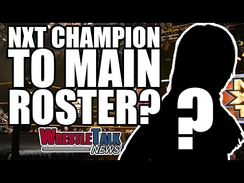 "Matt & Jeff Hardy ""Coming To WWE!"" NXT Champion To Main Roster? 
