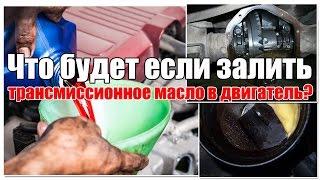 видео трансмиссионное масло