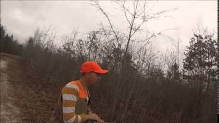 Nc Rabbit Hunting With Burn Em Up Kennels