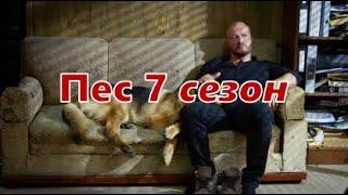 ПЕС 7 СЕЗОН. Дата выхода. Не покажут в России? ЛИХАЧ 2 сезон