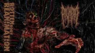 » Pighead - Dead Flesh Alive
