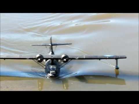 Aussie Black Cat PBY
