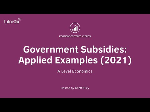 Government Subsidies: Applied Examples (2021) I A Level and IB Economics