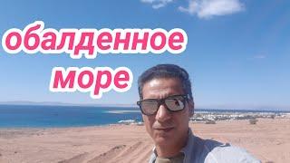 Шарм эль Шейх 18 20 февраля 2021 г Море необыкновенной красоты