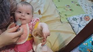 Первый ПРИКОРМ грудничка.Кушаем гречневую кашку.Учимся кушать впервые!Влог Lizzi Show.