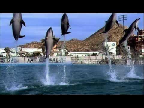 Discover Baja California Sur Mexico
