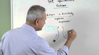 Immunology lecture 15 - Type III Hypersensitivity Reactions 1/6