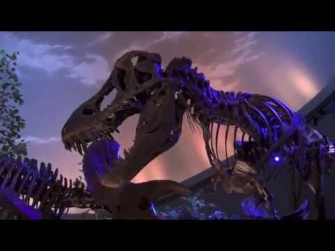 Dinosphere @ Indianapolis Children's Museum