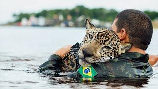 Najbardziej Wzruszające Przypadki Ratowania Zwierząt