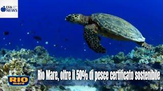 Rio Mare, oltre il 50% di pesce certificato sostenibile