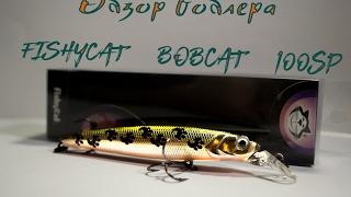 Обзор воблера FishyCat BobCat 100SP(часть 1)