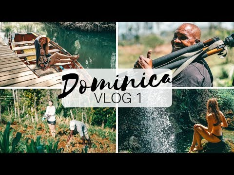 In 3 Sekunden am Meer | DOMINICA TRAVEL VLOG #1 | Lilies Diary