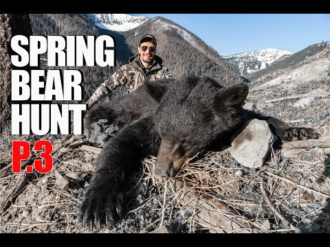 SPRING BLACK BEAR HUNT | BIG BEAR DOWN | 20 YARD SHOT | S1 | E10