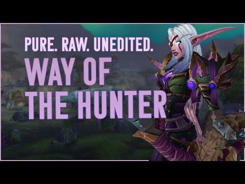THE WAY - MM Hunter WoW PvP (BFA 8.2.5)