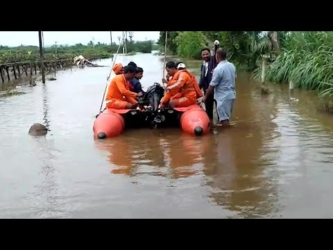 Kolhapur deluge: Army, Navy, Coast Guard teams deployed for rescue ops