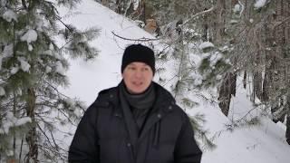 ГОРОСКОП НА НЕДЕЛЮ с 19 до 25 НОЯБРЯ / Астропрогноз Павла Чудинова HD