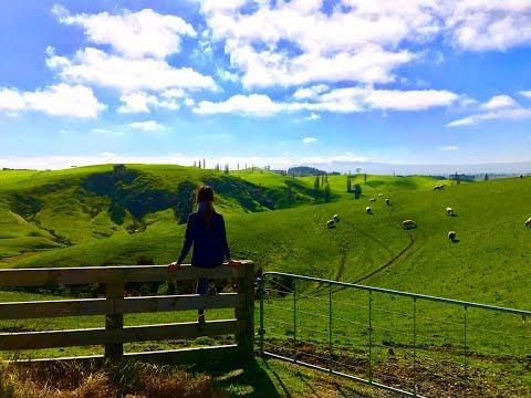 15 Days Auckland North Island,New Zealand Trip -Aug 2017