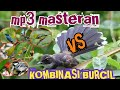 Suara Master Pikat Burung Kecil Paling Ampuh  Mp3 - Mp4 Download