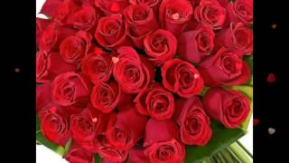 Red Roses For You,Flowers For You,Beautiful Wallpapers,E-card,Whatsapp Video