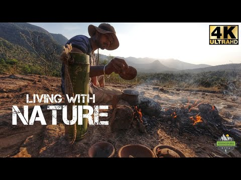 Living with Nature during Quarantine | Solo camping in Forest | Forest cooking