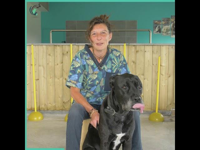 L'interview clinique d'Héléne   Clinique vétérinaire Saint Roch