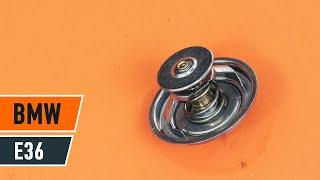 Gratis videoguide om hvordan du udskifte Motor