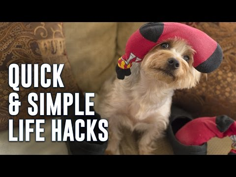 5 Quick and Simple Life Hacks